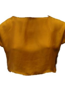 N2118 Top Cropped (amarelo)